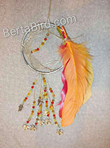 fall dream catcher