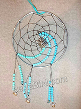 turtle dream catcher