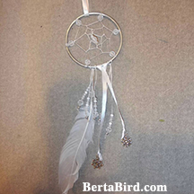 white winter dream catcher
